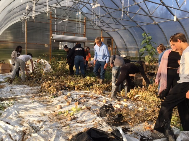 students cleaning the hoop house