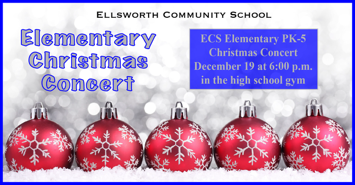 Large_elementary_christmas_concert_event-01